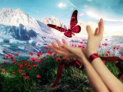 Пословицы и поговорки о радости